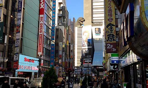 Godzilla in Kabukicho